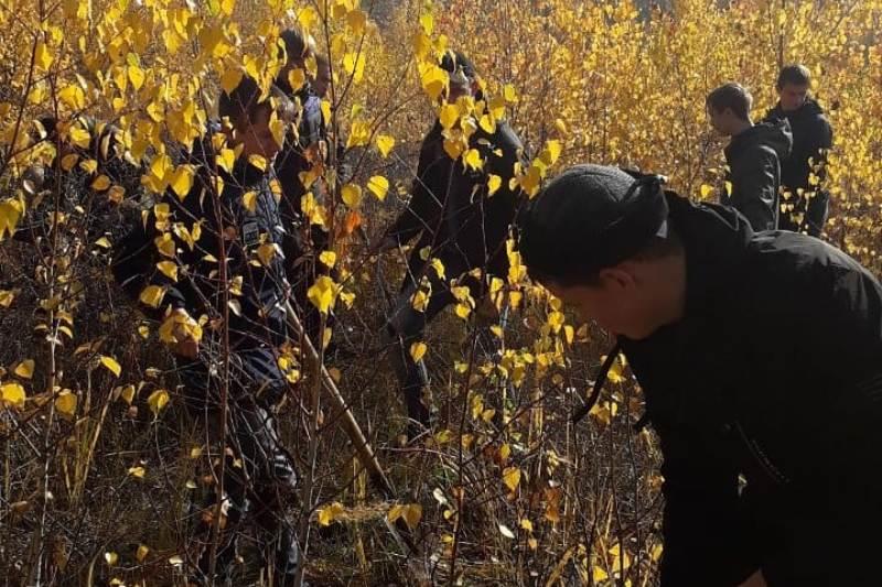 Студенты Вольского технологического колледжа помогали Вольскому лесхозу