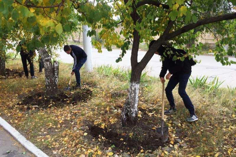 Студенты Вольского технологического колледжа  на акции «Чистый двор»